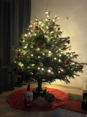 Eine Weihnachtsgeschichte...... Carmen911